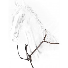 Equiline breastplate